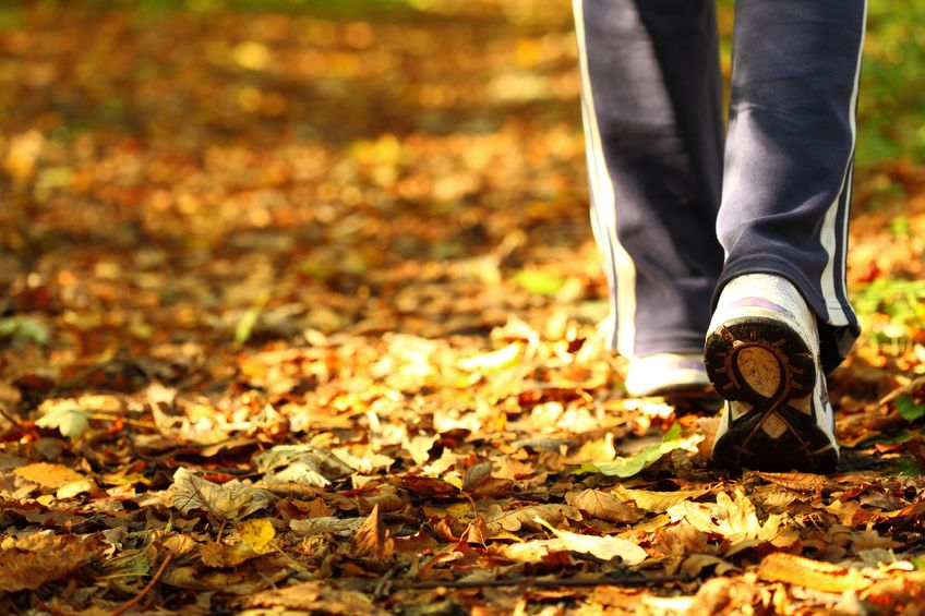 Lyme disease natural treatment | Strength & Vitality Wellness Center