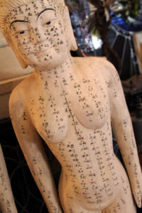 Baltimore Acupuncture and Wellness Clinic | Strength & Vitality Wellness Center